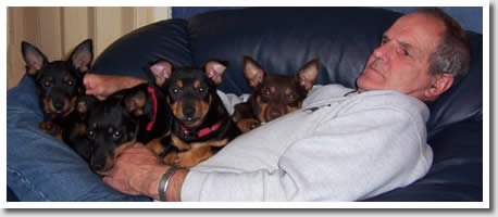 Bill Simpson realexes with Simonsville Lancashire Heelers