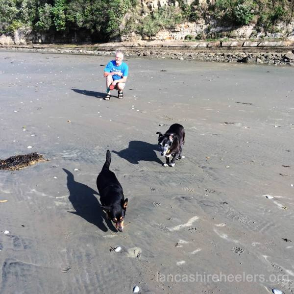 Poppy with Buffy on Orewa Beach
