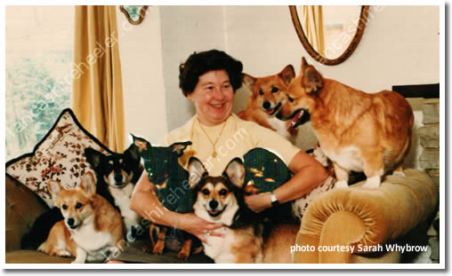 Kathie Kidd with her  Pembroke Corgis and Lancashire Heelers
