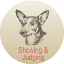Read rticles and features about Lancashire Heeler showing & judging